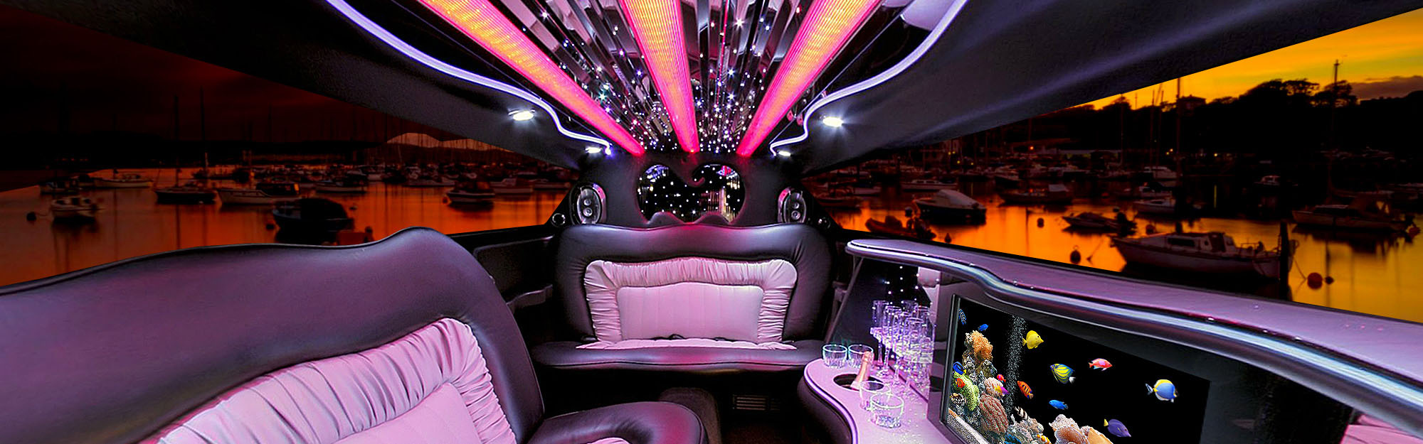 exotic limo background.jpg